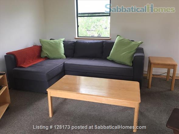 Charming 1 BR Elmwood apartment, ideal location near UC Berkeley Home Rental in Berkeley, California, United States 3