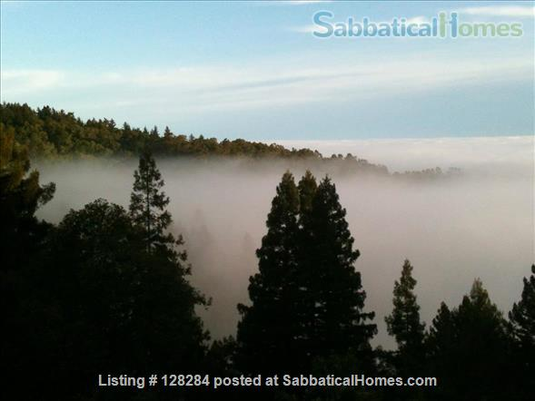 Mountain retreat home 10mins to 280, 20 mins to Stanford, stunning views Home Rental in Woodside, California, United States 8