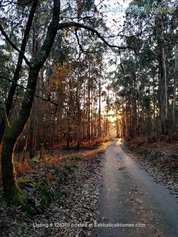 FLAT AT  FISHING TOWN TO WRITE  , REST , NICE WALKS Home Rental in Marín, GA, Spain 6