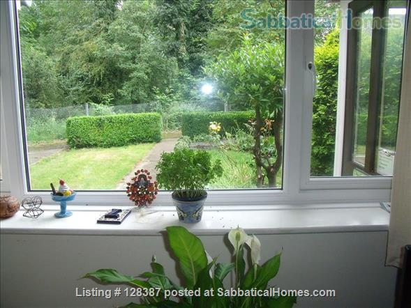 small riverside house close to Oxford Home Rental in Abingdon, England, United Kingdom 1