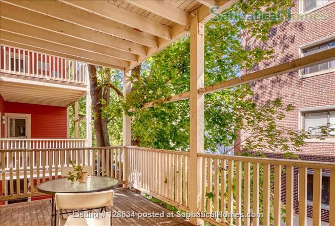 Splendid, spacious and new in Harvard Square  Home Rental in Cambridge, Massachusetts, United States 9