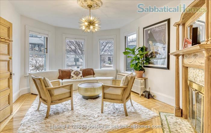 Splendid, spacious and new in Harvard Square  Home Rental in Cambridge, Massachusetts, United States 0