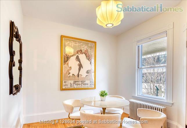 Splendid, spacious and new in Harvard Square  Home Rental in Cambridge, Massachusetts, United States 2