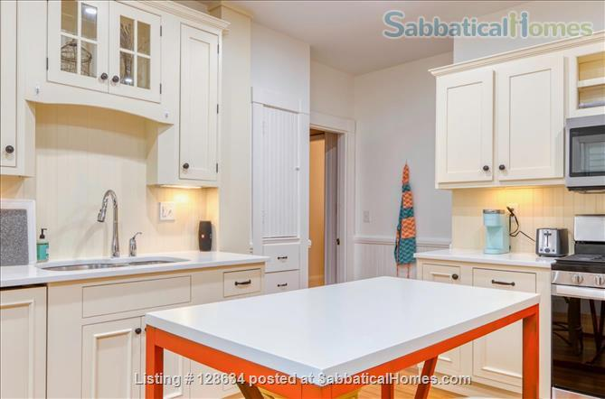 Splendid, spacious and new in Harvard Square  Home Rental in Cambridge, Massachusetts, United States 3