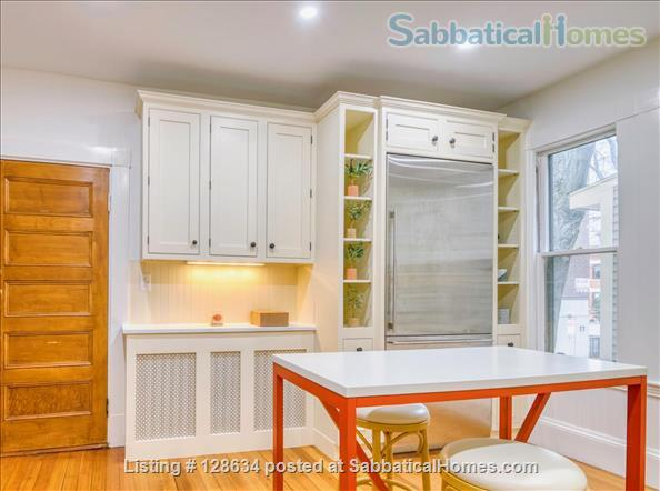 Splendid, spacious and new in Harvard Square  Home Rental in Cambridge, Massachusetts, United States 4