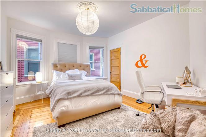 Splendid, spacious and new in Harvard Square  Home Rental in Cambridge, Massachusetts, United States 5
