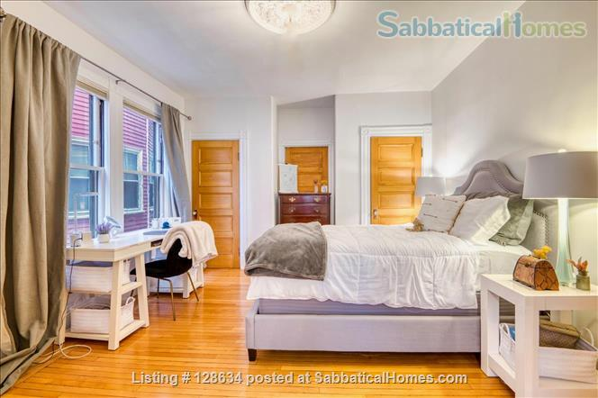 Splendid, spacious and new in Harvard Square  Home Rental in Cambridge, Massachusetts, United States 7