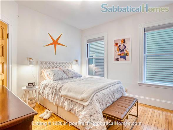Splendid, spacious and new in Harvard Square  Home Rental in Cambridge, Massachusetts, United States 8