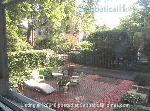 Charming furnished studio apartment near Harvard Square Home Rental in Cambridge, Massachusetts, United States 9