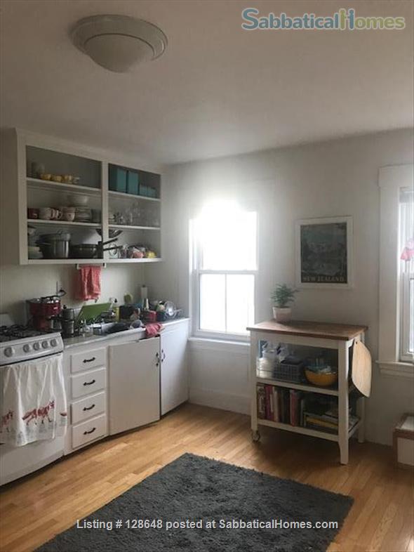 Charming furnished studio apartment near Harvard Square Home Rental in Cambridge, Massachusetts, United States 4