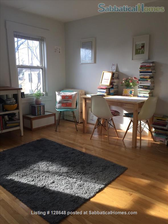 Charming furnished studio apartment near Harvard Square Home Rental in Cambridge, Massachusetts, United States 5
