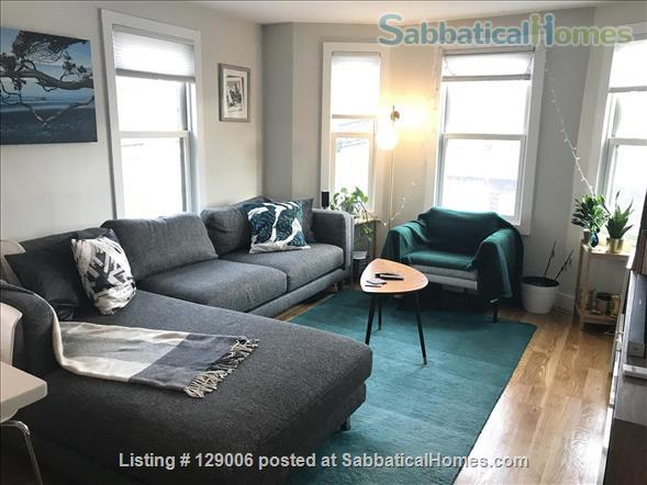 Bright, furnished 2 bed + 2 bath -- 15 min to MIT, Kendall, Harvard! Home Rental in Cambridge, Massachusetts, United States 1
