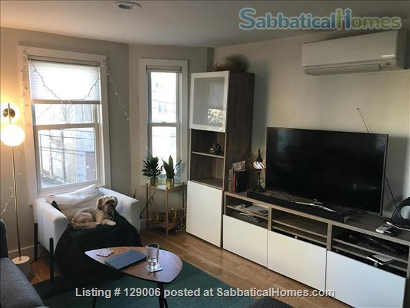 Bright, furnished 2 bed + 2 bath -- 15 min to MIT, Kendall, Harvard! Home Rental in Cambridge, Massachusetts, United States 0