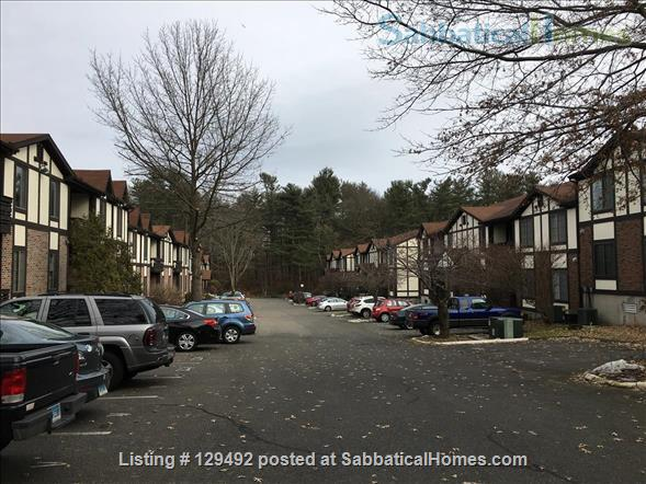 Looking for a 1-bedroom condo in quiet complex Home Rental in Hamden, Connecticut, United States 9