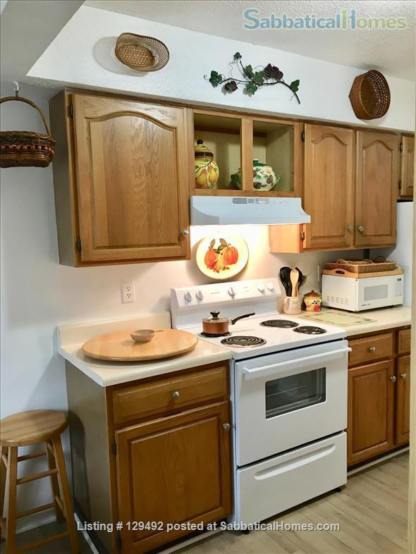 Looking for a 1-bedroom condo in quiet complex Home Rental in Hamden, Connecticut, United States 5