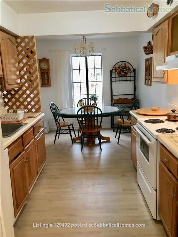 Looking for a 1-bedroom condo in quiet complex Home Rental in Hamden, Connecticut, United States 7