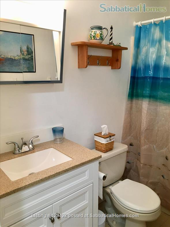 Looking for a 1-bedroom condo in quiet complex Home Rental in Hamden, Connecticut, United States 8