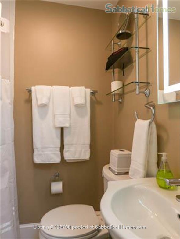 Comfortable Furnished Studio Condo (M306B) Home Rental in Boston, Massachusetts, United States 2