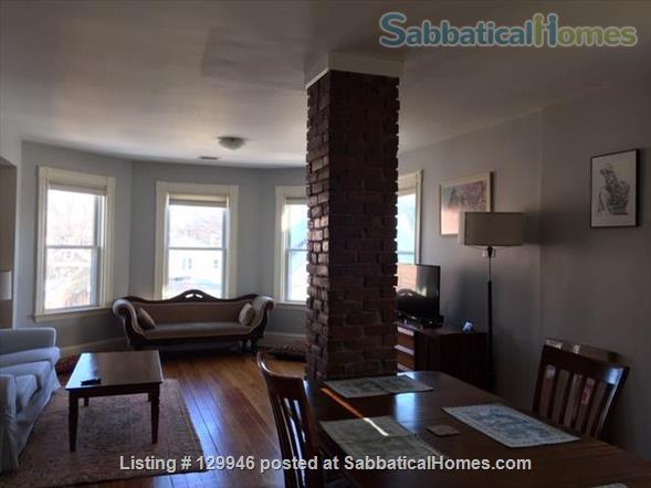 Beautiful, light, airy 2BR apartment in Inman Square Home Rental in Cambridge, Massachusetts, United States 2