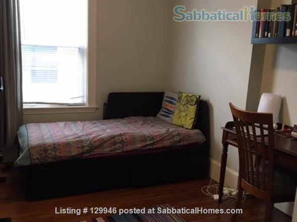 Beautiful, light, airy 2BR apartment in Inman Square Home Rental in Cambridge, Massachusetts, United States 5