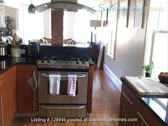 Beautiful, light, airy 2BR apartment in Inman Square Home Rental in Cambridge, Massachusetts, United States 6