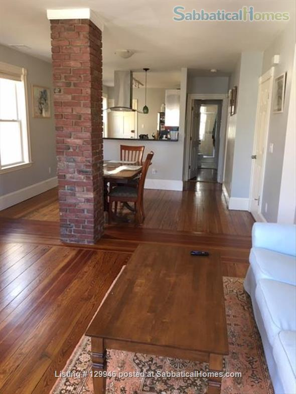 Beautiful, light, airy 2BR apartment in Inman Square Home Rental in Cambridge, Massachusetts, United States 8