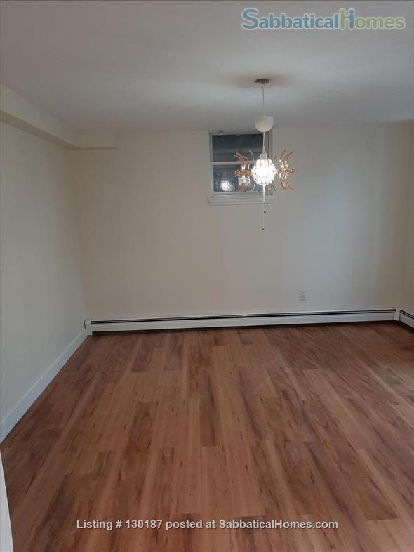 Brand new renovation 1BR near Wholefoods/Central Square/MIT/Tech area Home Rental in Cambridge, Massachusetts, United States 3