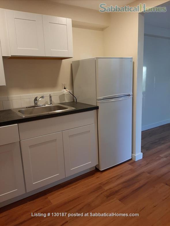 Brand new renovation 1BR near Wholefoods/Central Square/MIT/Tech area Home Rental in Cambridge, Massachusetts, United States 5
