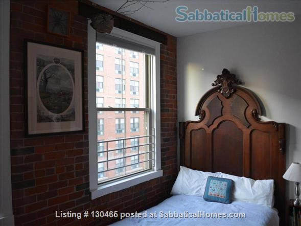 Sun-filled, historic downtown condo Home Rental in New Haven, Connecticut, United States 8