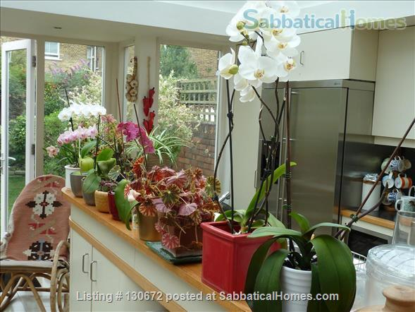 comfortable room in pleasant quiet house Home Rental in London, England, United Kingdom 4
