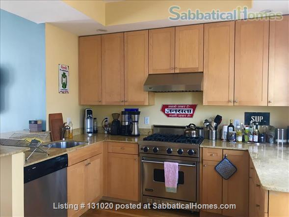 Stylish 3BR (2000sq ft) sabbatical oasis in the heart of Cambridge Home Rental in Cambridge, Massachusetts, United States 1
