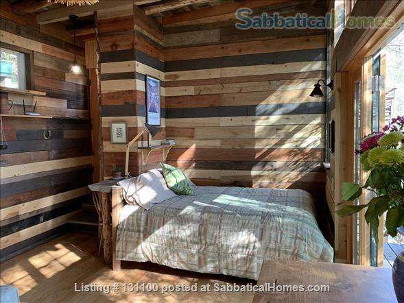 Cabin in the trees Home Rental in Berkeley, California, United States 1