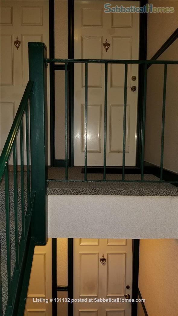 Beautiful 1-BR condo in Arlington, VA, near Washington DC Home Rental in Arlington, Virginia, United States 0