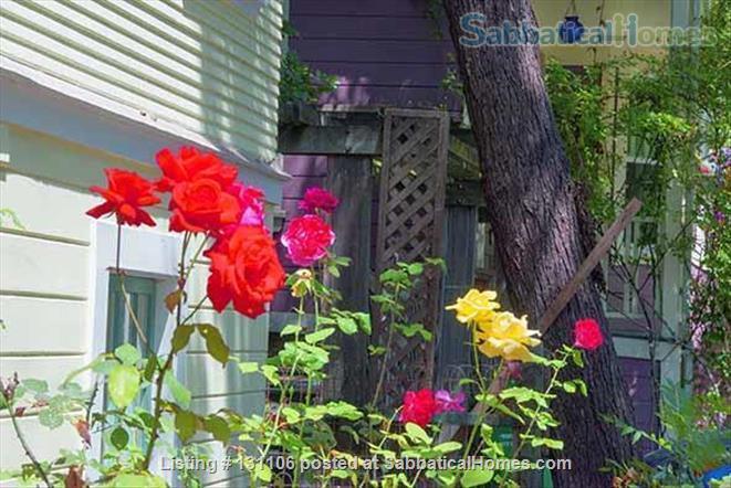 Rose Garden Studio, a sunny private studio apartment near downtown Berkeley and UC Home Rental in Berkeley, California, United States 9