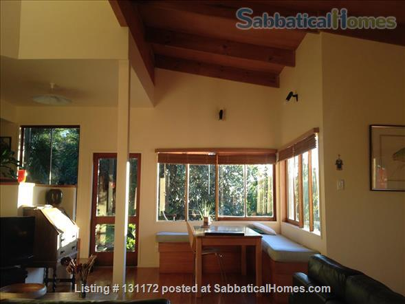Architecturally designed house in native bush Home Rental in Kerikeri, Northland, New Zealand 1