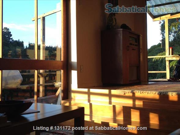 Architecturally designed house in native bush Home Rental in Kerikeri, Northland, New Zealand 0