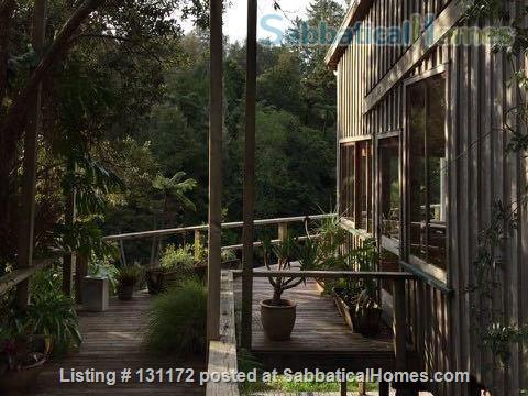 Architecturally designed house in native bush Home Rental in Kerikeri, Northland, New Zealand 2