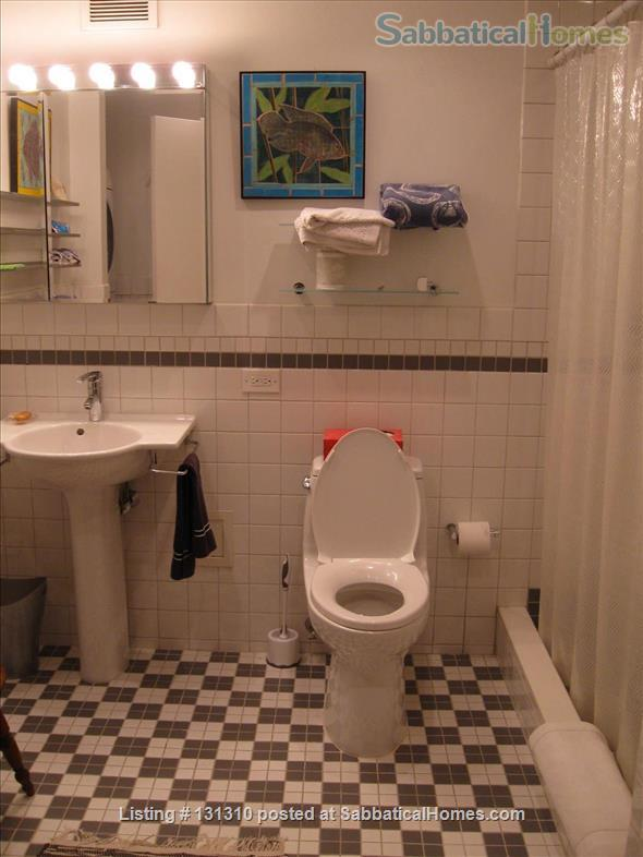 Midtown Manhattan Artist's Home Home Rental in New York, New York, United States 8
