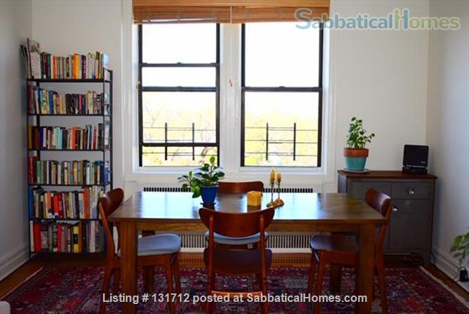 Sunny 1 Bedroom in Ditmas Park, Brooklyn Home Rental in Brooklyn, New York, United States 1