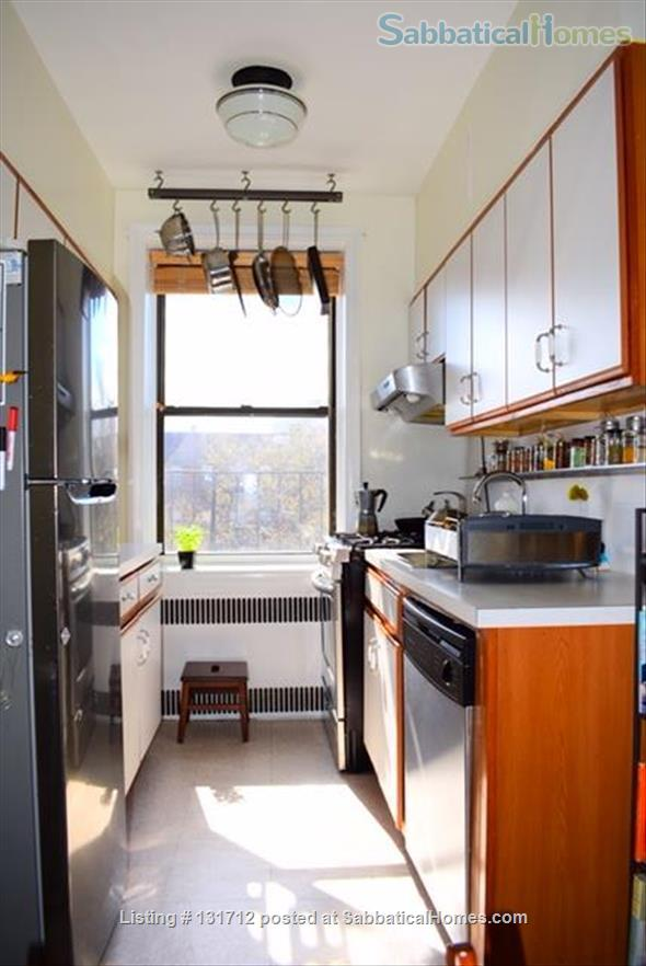 Sunny 1 Bedroom in Ditmas Park, Brooklyn Home Rental in Brooklyn, New York, United States 3