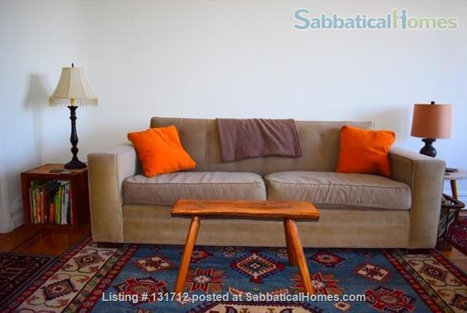 Sunny 1 Bedroom in Ditmas Park, Brooklyn Home Rental in Brooklyn, New York, United States 0