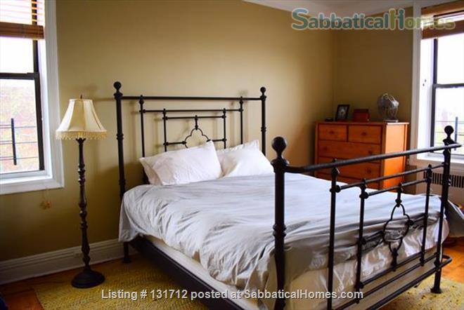 Sunny 1 Bedroom in Ditmas Park, Brooklyn Home Rental in Brooklyn, New York, United States 2