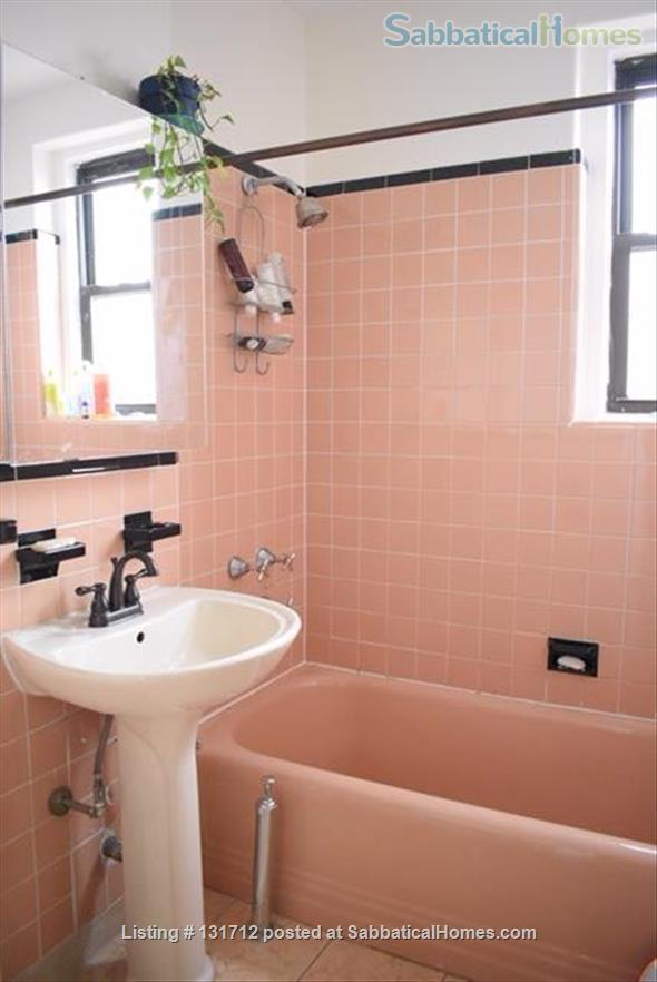 Sunny 1 Bedroom in Ditmas Park, Brooklyn Home Rental in Brooklyn, New York, United States 4