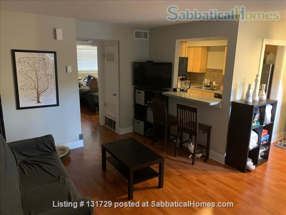 1 bed/1 bath Hyde Park Home Rental in Austin, Texas, United States 3