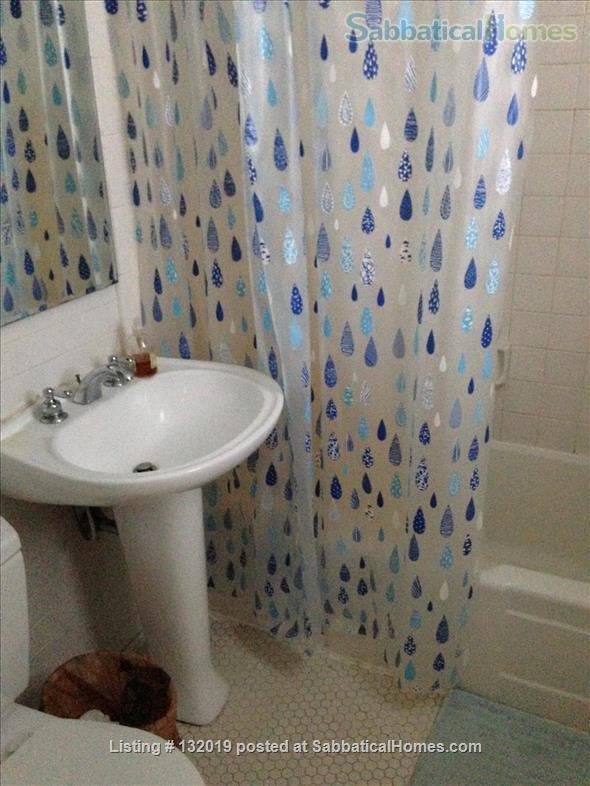 Walk to UNC-CH Home Rental in Chapel Hill, North Carolina, United States 5