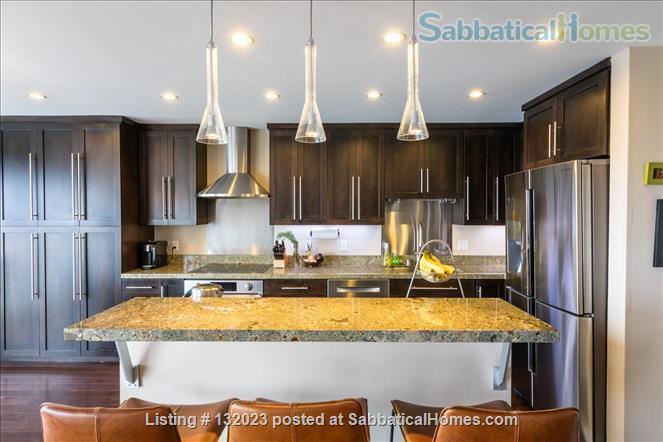 Fantastic Luxury Penthouse Apt, Million Dollar Panoramic Views Home Rental in San Francisco, California, United States 2