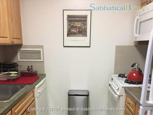Modern Two Bedroom, Two Bath + Office Apartment W/24 Hr Front Desk Security Home Rental in Brooklyn, New York, United States 6