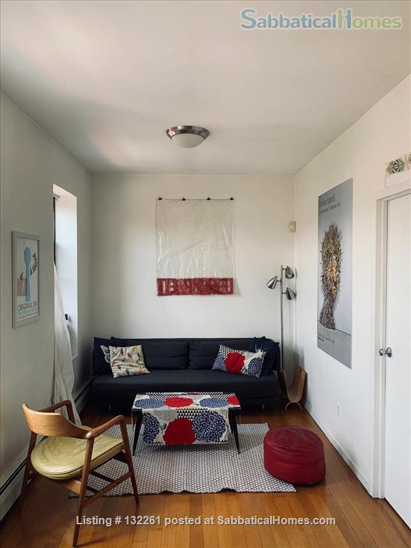 Sunny one-bedroom apartment in Brooklyn - September 2021 - June 2022 Home Rental in Bedford-Stuyvesant, New York, United States 1