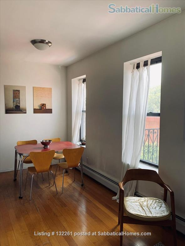 Sunny one-bedroom apartment in Brooklyn - September 2021 - June 2022 Home Rental in Bedford-Stuyvesant, New York, United States 0
