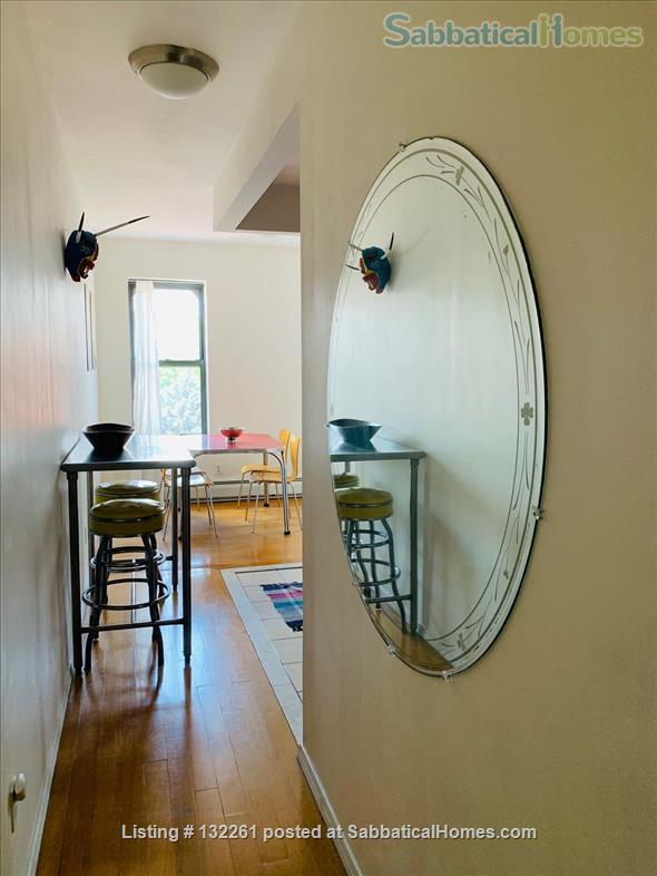 Sunny one-bedroom apartment in Brooklyn - September 2021 - June 2022 Home Rental in Bedford-Stuyvesant, New York, United States 5